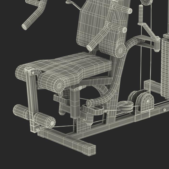 3D Weight Machine 2